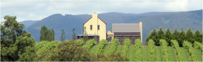 View of Badger's Brook Cellar Door in the Yarra Valley