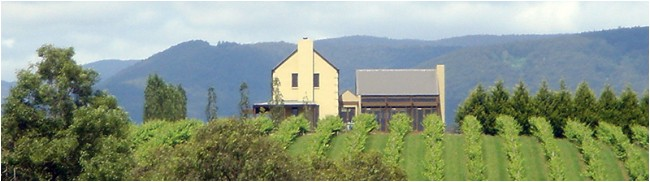 Badgers Brook Cellar Door Yarra Valley