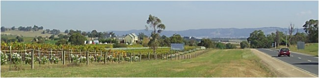 Badger's Brook Winery as seen from Healesville approach